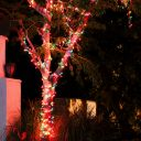 Christmas Night 2013 Key West Florida 35